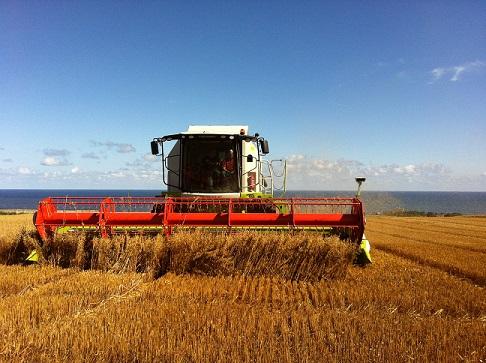 harvesting-farm-berwick